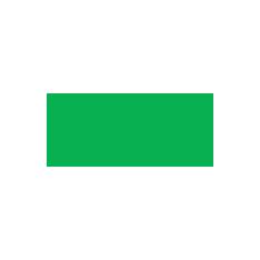 Pro Partner VEEAM Logo